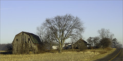 Farm, Dow Road (joeldinda) Tags: house tree abandoned barn ruins farm