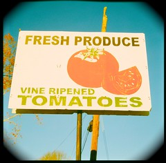 Fresh Produce (Steve Snodgrass) Tags: sign tomato vine fresh fade produce ripened