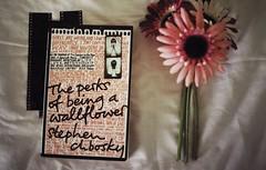 * (i am aimee) Tags: pink black colour film 35mm book text canona1 perksofbeingawallflower stephenchbosky hnythstls