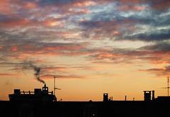 In the morning you always come back. (Alessia Franco) Tags: morning torino alba tetti poesia sole colori luce gennaio camini mattino cesarepavese