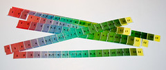 pH Color Strips (listentoreason) Tags: canon technology science ef28135mmf3556isusm chemicalscience
