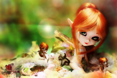 Faye (Konato) Tags: red green fairytale eyes redhead elf fairy wig pullip custom pure fe custo faye orginal neemo dashka fanatica konato