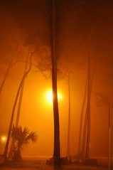 Fort Walton Beach, Florida (fisherbray) Tags: usa fog night nikon nebel unitedstates florida fortwaltonbeach ftwaltonbeach fwb 32548 okaloosacounty d5000 fisherbray lizajacksonpark zip32548