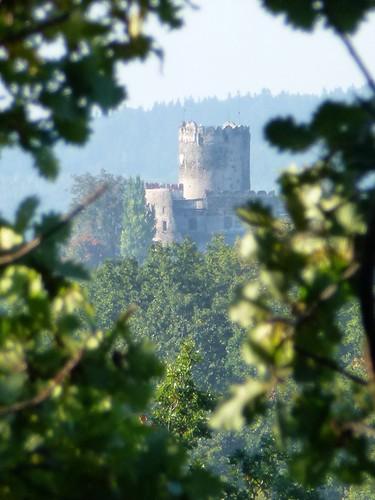 Zamek w Bolkowie spod zamku Świny