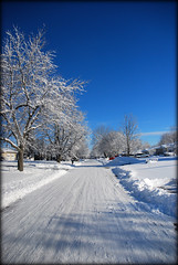 Down My Street (jodispayne.....Mostly off :() Tags: winter house snow weather nemo snowstorm neighborhood noreaster 21013