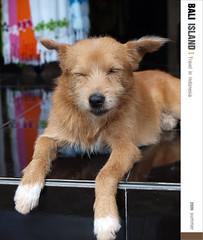 D2_Sleep dog (Ache_Hsieh) Tags: travel summer bali digital indonesia island olympus e3 巴里島 zd 蜜月 印尼 1454mm2835