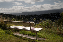 Bench Overlooking Wellington (Benoit Leveau) Tags: newzealand 35mm bench f14 wellington samyang