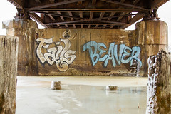 FAILS - BEAVER (TheLost&Found) Tags: street city bridge urban lake cold detail art ice water saint minnesota st wall train canon river bench painting paul photography eos graffiti frozen amazing image painted cities minneapolis twin spot beaver explore hidden crew tc 7d imaging graff piece aerosol burner exploration fails mn hc freight beav urbex mols beave hesh benched benching artfinder thelostandfound