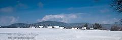 pogled v Selo_02 (gregork.) Tags: blue houses winter sky panorama house snow mountains tree forest landscape hill slovenia slovenija zima could gora februar selo sneg vodice landsscape hrib panoramio gozd drevo 2013 hladno hiša rašica