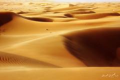 ( ibrahim) Tags: sky sun nature clouds sunrise canon landscape photography eos sand desert camel drought sands  ibrahim abdullah hilux      50d       canon50d      alyahya               altmimi