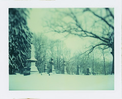 under the weather (.{kim unscripted}.) Tags: snow graveyard day series largeformat undertheweather polaroid59