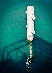 Seine sentry (campra) Tags: paris france green seine river turquoise pole