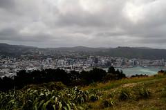 Wellington (rwoan) Tags: newzealand wellington hdr