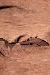 Marocco-011 (Daniele D'Ari) Tags: africa nikon desert dune morocco marocco marrakech medina piazza essaouira ksar deserto reportage erg jema elfna atbenhaddou photoreportage ergchebb piazzajemaelfna chebb