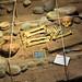Ricostruzione degli scavi di una tomba in Costarica