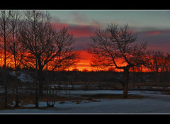 Dancing In The Twilight (LostMyHeadache: Absolutely Free *) Tags: trees winter sunset sky snow clouds canon fire evening twilight shadows dusk branches silhouettes atmosphere davidsmith calgaryalbertacanada eos60d