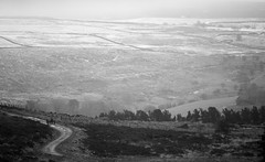 The Roaches (SamBingham) Tags: road uk winter england bw white mountain snow black contrast walking landscape lumix photography buxton day view sam hiking path 10 district g derbyshire peakdistrict north peak line hills panasonic upper highland processing vista hikers peaks leek 250 hulme f63 roaches 200mm bingham 1400 iso250 g10 45200mm sambingham