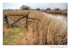 No Entry (Fred255 Photography) Tags: uk england london water landscape landscapes wildlife wetlands l barnes ef 1740 gp manfrotto wildfowl waterscapes eos1ds markiii llens greatphotographers ef1740mmf4lusm ef1740mm 1dsmk3 canoneos1dsmarkiii wwtlondonwetlandcentre mygearandme mygearandmepremium mygearandmebronze greaterphotographers bestevercompetitiongroup bestevergoldenartists vigilantphotographersunite vpu2 vpu3