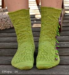 2016-07-26 002 (hepsi2) Tags: socks sukat sukkia tds2016