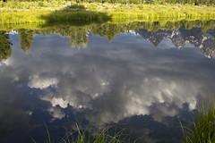 Reflected clouds - Schwabacher's Landing (nicoangleys) Tags: tetons grandtetonsnp nationalpark wyoming jacksonhole schwabacherslanding