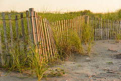 Early Morning (PMillera4) Tags: earlymorning beach avalonnj avalon jerseyshore newjersey beachfence