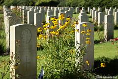 DN9A1257 (Josette Veltman) Tags: holten holterberg cemetery begraafplaats warcemetery oorlog wo2 slachtoffers canadese soldaten tweedewereldoorlog sallandseheuvelrug overijssel salland