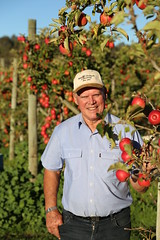 IMG_5950 (mavnjess) Tags: 28 may 2016 harvey edward giblett newton orchards manjimup harveygiblett newtonorchards cripps pink lady crippspinklady popaharv eating apple crunch crunchy biting apples pinklady pinkladyapple harv gibbo orchard appleorchard orchardist