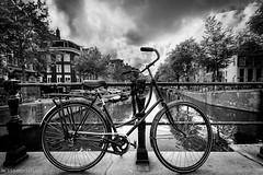 una clsica (Mauro Esains) Tags: amsterdam holanda puente hierro bicicleta clsica ruedas mujer canales agua aire libre rboles paseo travel cielo viajes turismo rayos autos reflejo blanco y negro nikon sigma