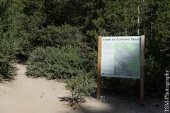 _IMG5289 (blackcloudbrew) Tags: hd2040limited pentaxk3 hike laketahoe placer shirleycanyon squawvalley