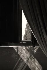 X-Light (GP Camera) Tags: nikond80 nikonafsdx1855mmf3556gvr window finestra curtain tenda shutter imposta windowsill davanzale glass vetro plaster intonaco light luce shadows ombre lighteffects effettidiluce rays raggi darkness oscurit geometries geometrie lines linee diagonals diagonali abstract astratto x cross croce sky cielo tree albero frond fronda textures trame monochrome monocromo bw biancoenero summer estate silence silenzio solitude solitudine vignetting italy italia marche darktable gimp digitalprocessing elaborazionedigitale