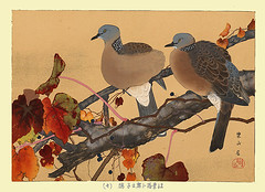 Japanese creeper and spotted dove (Japanese Flower and Bird Art) Tags: flower creeper parthenocissus tricuspidata vitaceae bird spotted dove streptopelia chinensis columbidae rakusan tsuchiya nihonga woodblock print japan japanese art readercollection