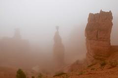 IMG_2832 (Geology Joel) Tags: fog hoodoos brycecanyon bryceamphitheater geology rocks nature nationalparks utah desert weather unique hike trails rain