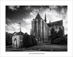 Sint-Kwintenskerk Leuven (David Jonck) Tags: monument sintkwintenskerk davidjonck d750 nikon city naamsestraat blackwhite bw ts blackandwhite church leuven tiltshift 24mm 3000