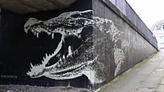 Crocodile (Wider World) Tags: scotland glasgow charingcross crocodile graffiti monochrome algae reptile klingatron jamesklinge black green