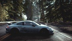 Ecologic (polyneutron) Tags: car photography porsche 911 gt3 white supercar racer needforspeed nfs rivals pc videogame photomode depthoffield plants trees wet road