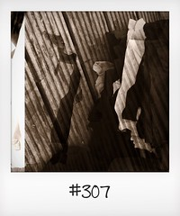 """#DailyPolaroid of 31-7-16 #307 • <a style=""""font-size:0.8em;"""" href=""""http://www.flickr.com/photos/47939785@N05/29311279766/"""" target=""""_blank"""">View on Flickr</a>"""