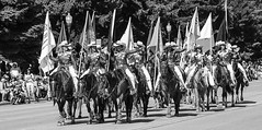 Cowgirls Ride (wyojones) Tags: wyoming cody codystampederodeo codystampederodeoparade cowgirlup equestriandrillteam horse cowgirl flags drillteam hats boots redwhiteandblue shirts britches street crowd belts wyojones