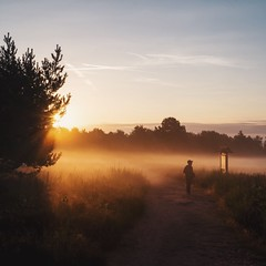 Chasing the morning light. (christiannass) Tags: sony explore sonyslta58 deutschland photography inspired inspiring exploring germany camera flickr traveling sunrise people tree fog day summer nature idyllic tranquility sun morning outdoors light sky