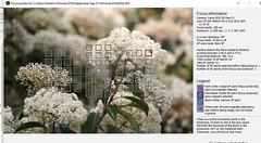 Capture (Graham Mahoney) Tags: canon 5d mark iv 100400 mkii