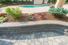 After 2016 (33) (The Sharper Cut Landscapes) Tags: belgardhardscapes patio pavers plantings paverdesign pool pavilion walkway steps seatwall retainingwall landscapedesign landscaping landscapecompany landscapelighting thesharpercutlandscapes thesharpercut