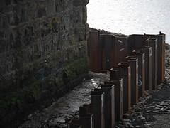 (turgidson) Tags: panasonic lumix dmc g7 panasoniclumixdmcg7 panasonicg7 micro four thirds microfourthirds m43 g lumixg mirrorless x vario 35100mm 35100 f28 hhs35100 telephoto zoom lens panasonic35100 panasoniclumixgxvario35100mmf28 silkypix developer studio pro 7 silkypixdeveloperstudiopro7 raw bray wicklow ireland flood defence protection relief scheme river dargle construction works p1050092 steel sheet pile piling sheetpiling