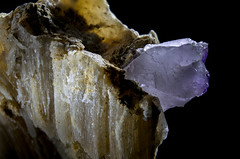 Fluorita en Yeso (Mr Giuseppe) Tags: mineral minerales geologia mineralogia rocas rocks crystals geology mineralogy