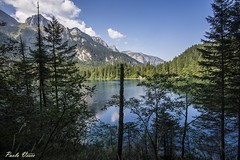 Un lago magico - A magic lake (Pablos55) Tags: tovel lago montagne alberi lake mountains trees