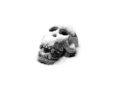 12-01-13-032 (fkarimpour) Tags: schnee winter blackandwhite bw white snow black cold sepia germany nikon stuttgart hiver neige d200 nikkor 18 50mmf18d f18d nikond200 50300