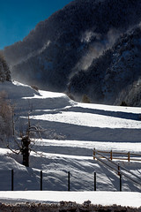 Andorra landscape: Canillo (lutzmeyer) Tags: pictures schnee winter snow mountains nature landscape photography montana europe photos pics nieve natur january natura paisaje images enero berge fotos invierno landschaft andorra bilder imagen pyrenees neu januar iberia montanas pirineos pirineus iberianpeninsula gebirge paisatge pyrenen imatges hivern muntanyes gener canillo gebirgszug iberischehalbinsel valldorient vallorient lutzmeyer lutzlutzmeyercom