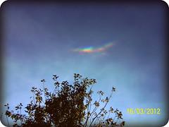 A different Rainbow (Estefy Bobadilla) Tags: sky tree arcoiris rainbow