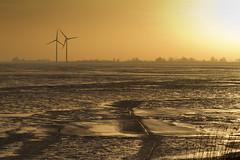 Marken Markermeer Windmolens ijs 2 (PeterWdeK) Tags: winter ice nederland marken tegenlicht ijs markermeer kruien