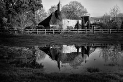 Big puddle & cottage (lovestruck.) Tags: county uk trees winter england bw house plant reflection green home wet water field grass rain rural puddle mono countryside blackwhite sony cottage ground monotone fields growing wiltshire dwelling altonbarnes honeystreet 2013 rx100