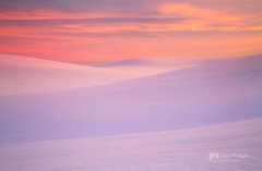 Winter Sunset Palouse Hills (Chip Phillips) Tags: thepowerofnow palousewinterinlandnorthwestwashingtonstatefarmingagricul palousewinterinlandnorthwestwashingtonstatefarmingagricultureusa