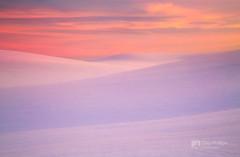 Winter Sunset Palouse Hills (Chip Phillips) Tags: thepowerofnow palousewinterinlandnorthwestwashingtonstatefarmingagricul palousewinterinlandnorthwestwashingtonstatefarmingagricultureusa